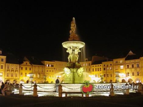 Čag české budějovice